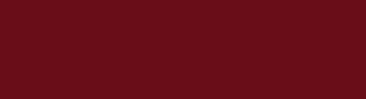 logo-55alcuore